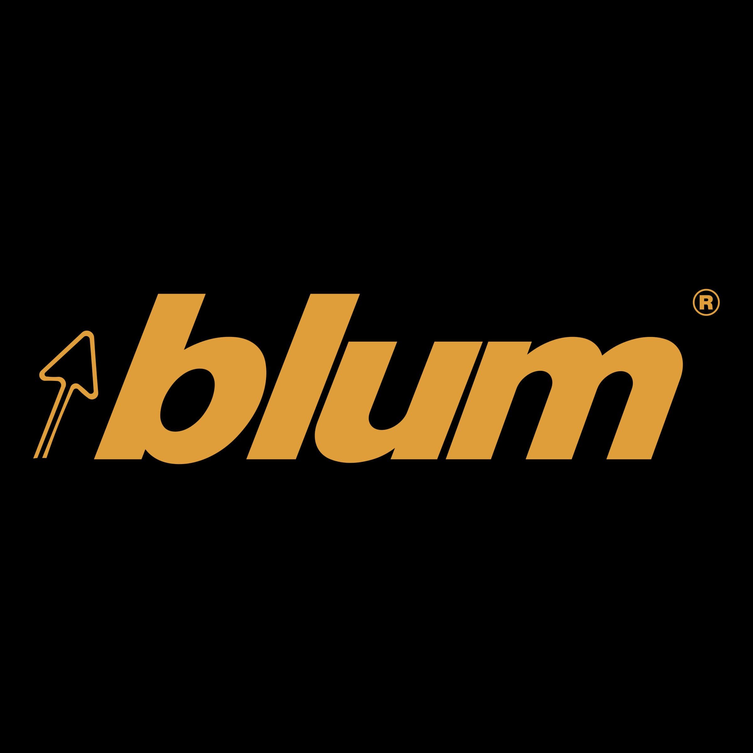 Поездка в Австрию с Blum